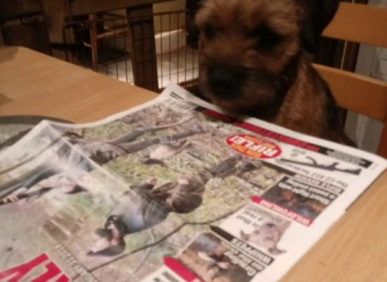 Moss reading countryman's weekly